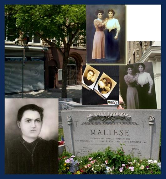 Maltese Family