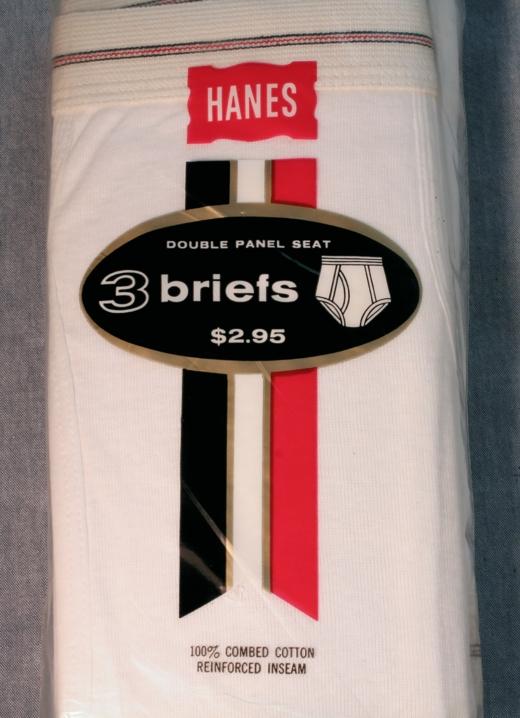 Hanes Briefs