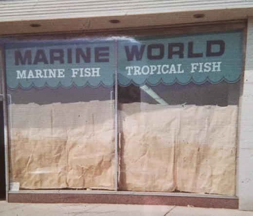 Marine World Store Front